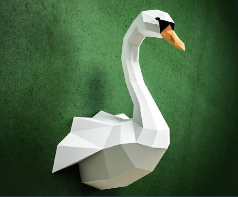 Cisne Pared